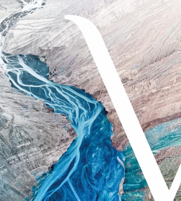 Avidus Fluss
